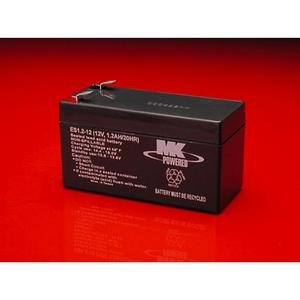 MK Sealed AGM 12 Volt Battery (12V013)