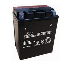 LEOCH Power Sport 12 Volt Battery (LTX14AH-BS), Dry Charged AGM Maintenance Free