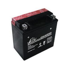 LEOCH Power Sport 12 Volt Battery (LTX14L-BS), Dry Charged AGM Maintenance Free